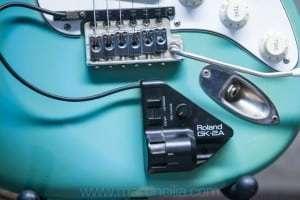 Fender Stratocaster 1966 Blue/Green