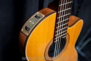Gibson Chet Atkins CE nylon string 1982