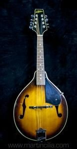 Mandolin Aria Model AM 200BS